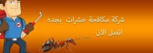شركة مكافحة حشرات بجده و مكه