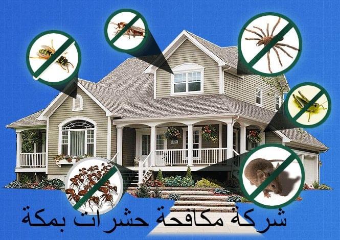 شركة مكافحة حشرات بمكة(لايجار 00201011916991) لمنزل نظيف خالي من جميع أنواع الحشرات