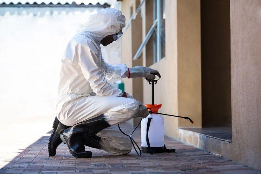شركة مكافحة حشرات و رش مبيدات بالخرج