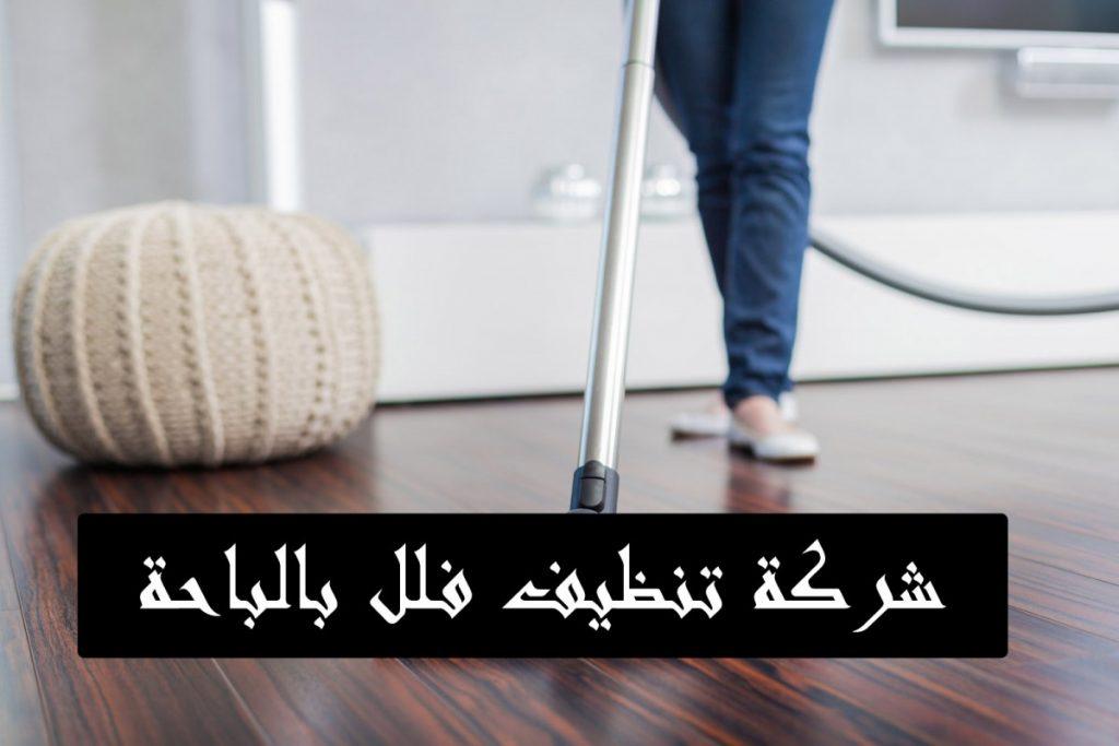 شركة تنظيف شقق بالباحة شركة تنظيف فلل بالباحة شركة تنظيف بالباحة شركة تنظيف منازل بالباحة