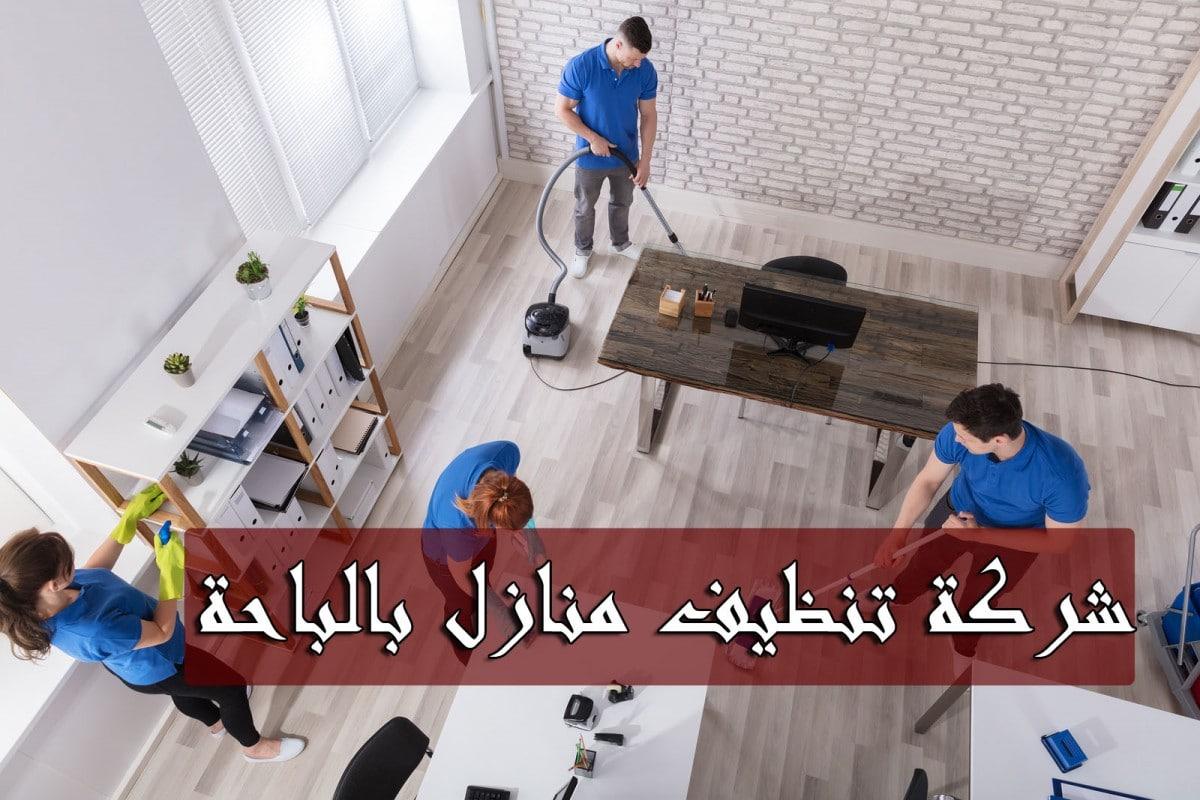 شركة تنظيف منازل بالباحة شركة تنظيف بالباحة شركة تنظيف فلل بالباحة